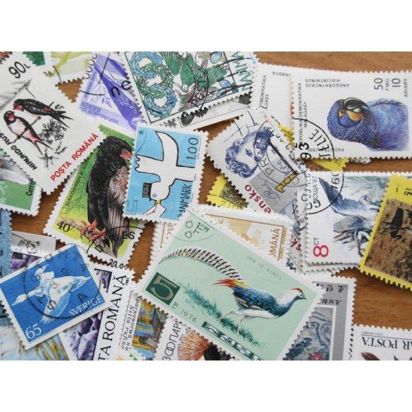 画像3: 鳥切手20枚入りパケット