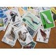 画像4: 鳥切手20枚入りパケット  (4)