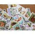 画像3: キノコ切手100枚入りパケット  (3)