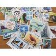 画像1: 鳥切手20枚入りパケット  (1)