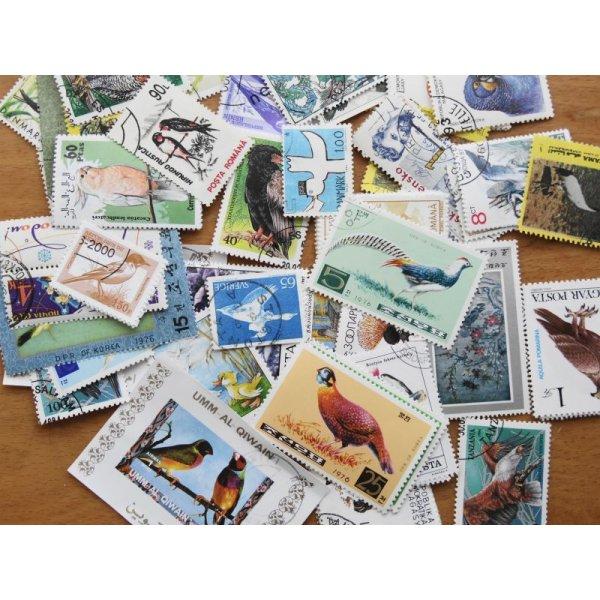 画像1: 鳥切手20枚入りパケット