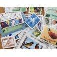 画像2: 鳥切手20枚入りパケット  (2)