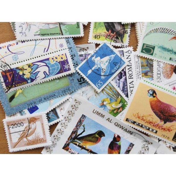 画像2: 鳥切手20枚入りパケット