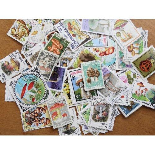 他の写真1: キノコ切手100枚入りパケット