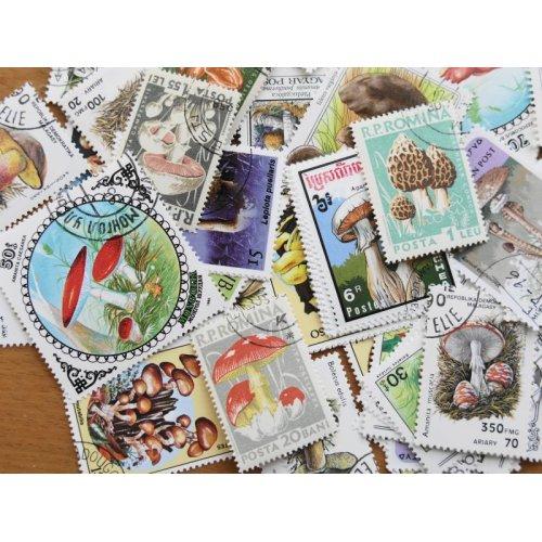 他の写真2: キノコ切手100枚入りパケット