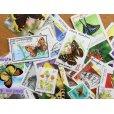 画像2: 蝶切手20枚入りパケット  (2)
