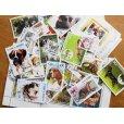画像1: 犬切手20枚入りパケット  (1)
