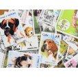 画像2: 犬切手20枚入りパケット  (2)
