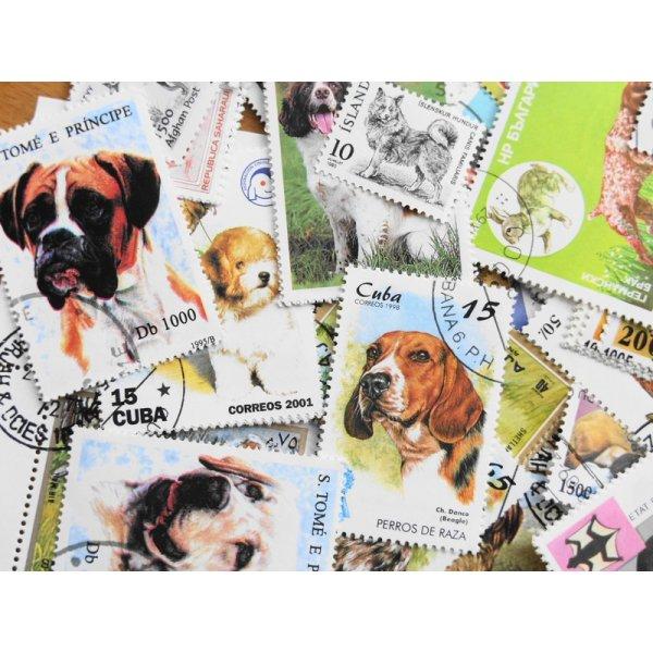 画像2: 犬切手20枚入りパケット