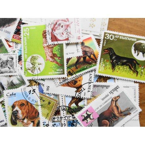 他の写真2: 犬切手20枚入りパケット