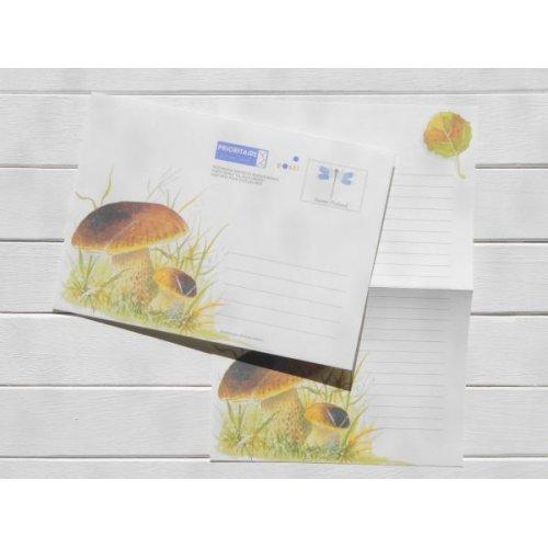 他の写真1: フィンランド ヤマドリタケ封筒(便箋付)
