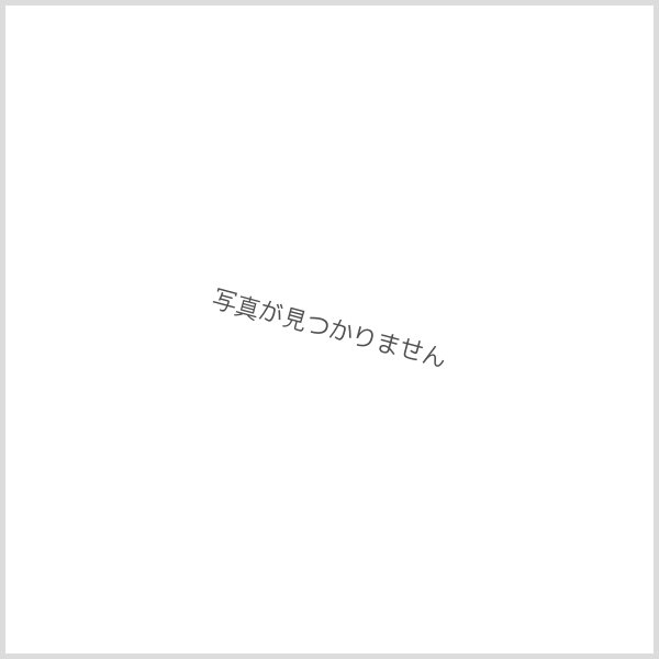 画像3: mtex 図鑑・鳥